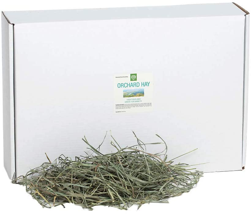 best rabbit hay - Small Pet Select Orchard Grass Hay Pet Food