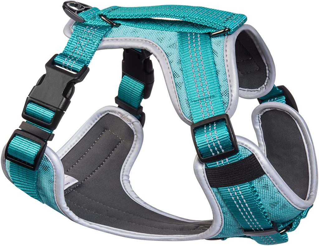 best small dog harnesses - Embark Pets Sports