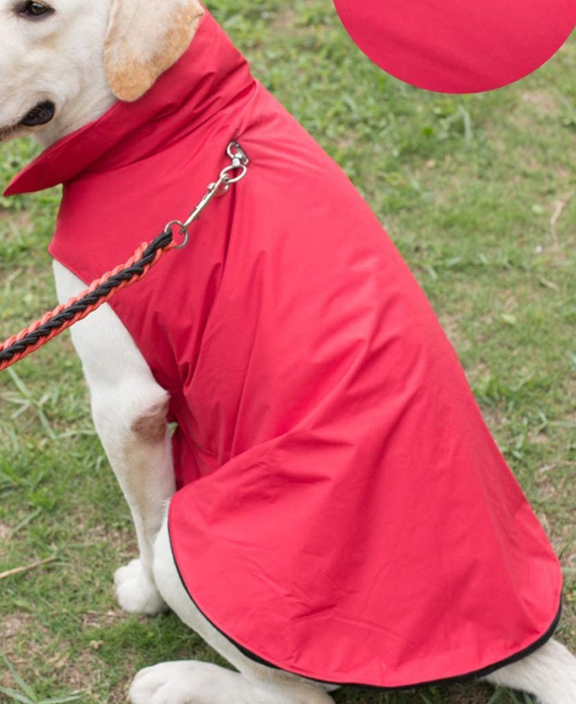 best winter jackts for dogs - PROPLUMS Dog Winter Jacket