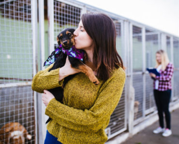 how to adopt a dog - featured
