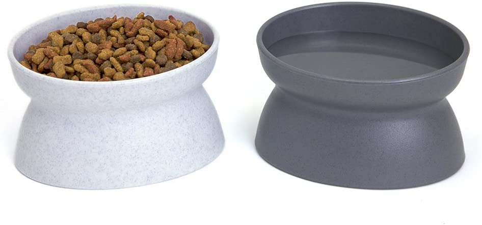 Best Cat Water Bowls - Kitty City